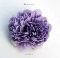 「ハルモニア」…13のチャクラを調和させる音楽